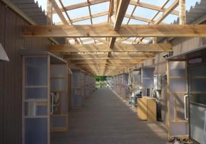 釜石市平田地区のコミュニティケア型仮設住宅団地が竣工
